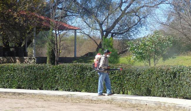 Mantenimiento de areas verdes y jardines grupo carber for Mantenimiento de jardines