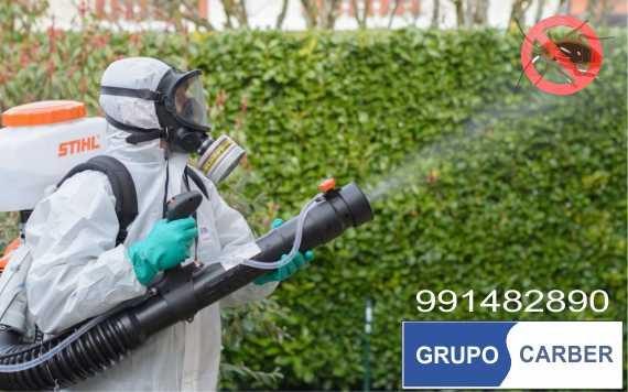 Empresa de Fumigacion en San Martin de Porres / GRUPO CARBER